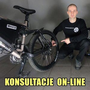 Konsultacje on-line / rower elektryczny / Marek Przybylak